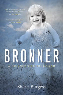 Bronner-cover-from-pub-website-252x378.jpg